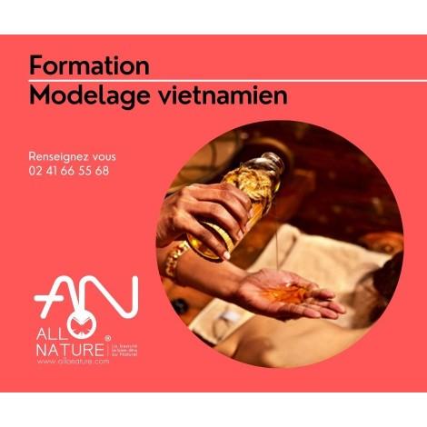 Formation modelage vietnamien