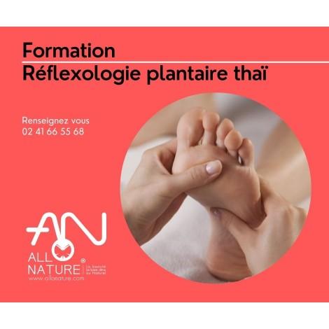 Formation Réflexologie plantaire thaï